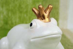weisse Froschkönig sitzt auf grünem Dekovlies